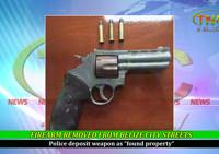 firearm_sm