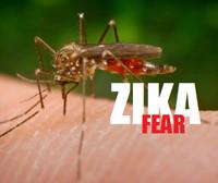 zika_sm