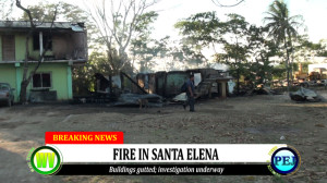 Fire destroys houses