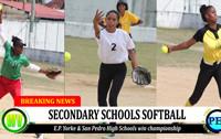 softball_sm