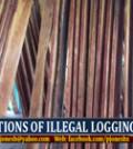 illegal_sm