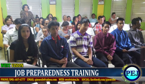Job skills training
